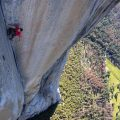 Free Solo: Lessons From The Edge